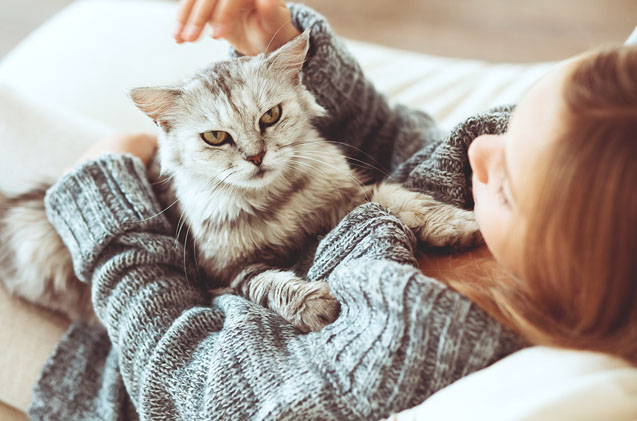Pets are Good for your Health: Top 5 Reasons